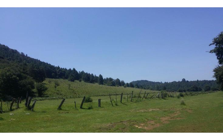 Foto de terreno comercial en venta en  , agua del pino, hidalgo, michoacán de ocampo, 1181887 No. 04