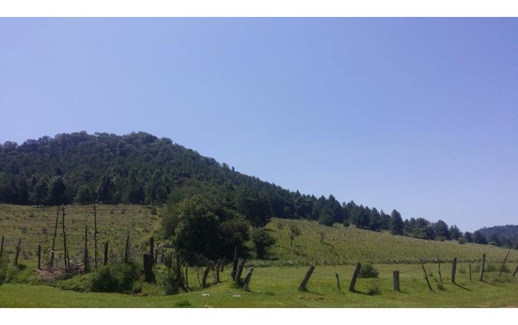 Foto de terreno comercial en venta en  , agua del pino, hidalgo, michoacán de ocampo, 1181887 No. 05