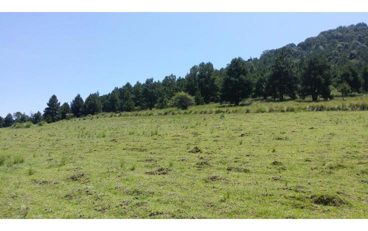 Foto de terreno comercial en venta en  , agua del pino, hidalgo, michoacán de ocampo, 1181887 No. 08