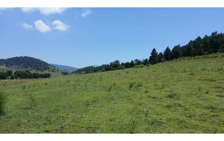 Foto de terreno comercial en venta en  , agua del pino, hidalgo, michoacán de ocampo, 1181887 No. 09