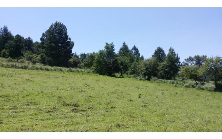 Foto de terreno comercial en venta en  , agua del pino, hidalgo, michoacán de ocampo, 1181887 No. 10