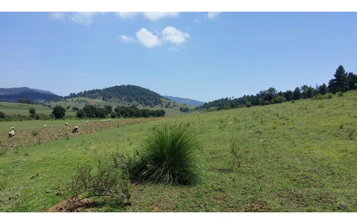 Foto de terreno comercial en venta en  , agua del pino, hidalgo, michoacán de ocampo, 1181887 No. 11