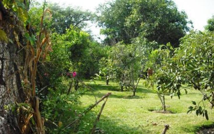 Foto de casa en venta en  , agua hedionda, cuautla, morelos, 1079645 No. 06