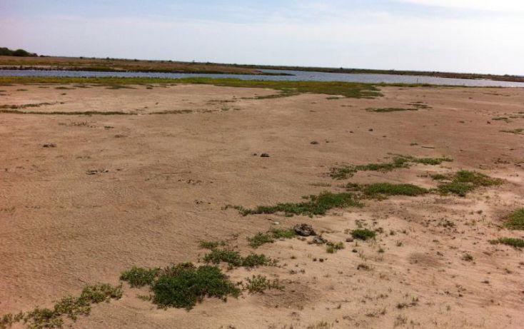 Foto de terreno comercial en venta en, agua verde, rosario, sinaloa, 1608548 no 06