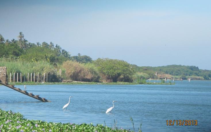 Foto de terreno habitacional en venta en  , aguas blancas, coyuca de benítez, guerrero, 1700248 No. 02