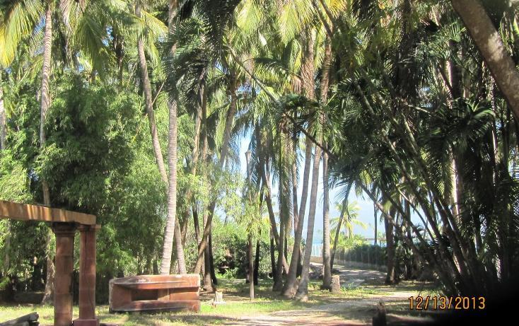 Foto de terreno habitacional en venta en  , aguas blancas, coyuca de benítez, guerrero, 1700248 No. 08
