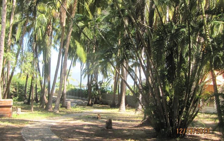 Foto de terreno habitacional en venta en  , aguas blancas, coyuca de benítez, guerrero, 1700248 No. 12