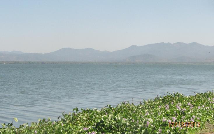 Foto de terreno habitacional en venta en  , aguas blancas, coyuca de benítez, guerrero, 1700248 No. 14