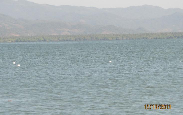 Foto de terreno habitacional en venta en  , aguas blancas, coyuca de benítez, guerrero, 1700248 No. 17