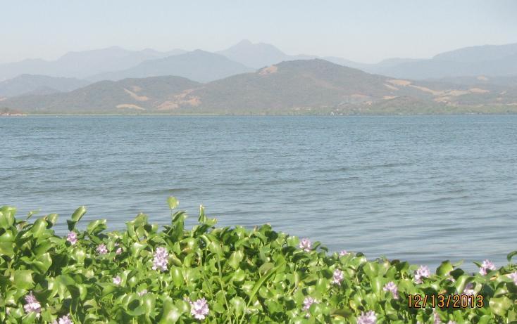 Foto de terreno habitacional en venta en  , aguas blancas, coyuca de benítez, guerrero, 1700248 No. 18
