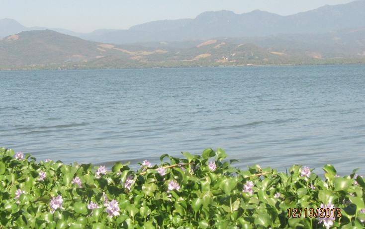 Foto de terreno habitacional en venta en  , aguas blancas, coyuca de benítez, guerrero, 1700248 No. 19