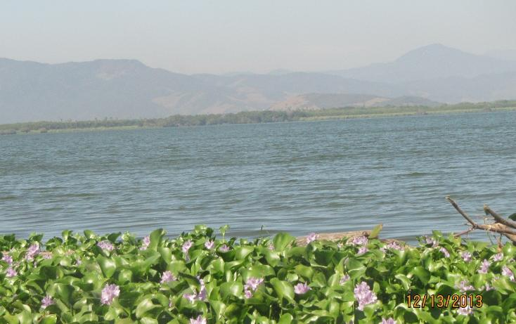 Foto de terreno habitacional en venta en  , aguas blancas, coyuca de benítez, guerrero, 1700248 No. 21