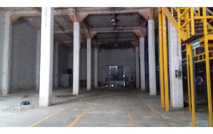 Foto de nave industrial en renta en  , águilas chuburna, mérida, yucatán, 1056513 No. 02