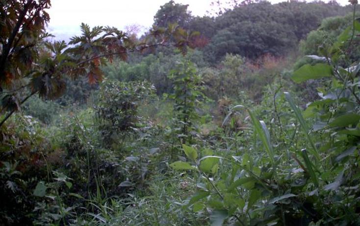 Foto de terreno habitacional en venta en  , ahuatepec, cuernavaca, morelos, 1045697 No. 04