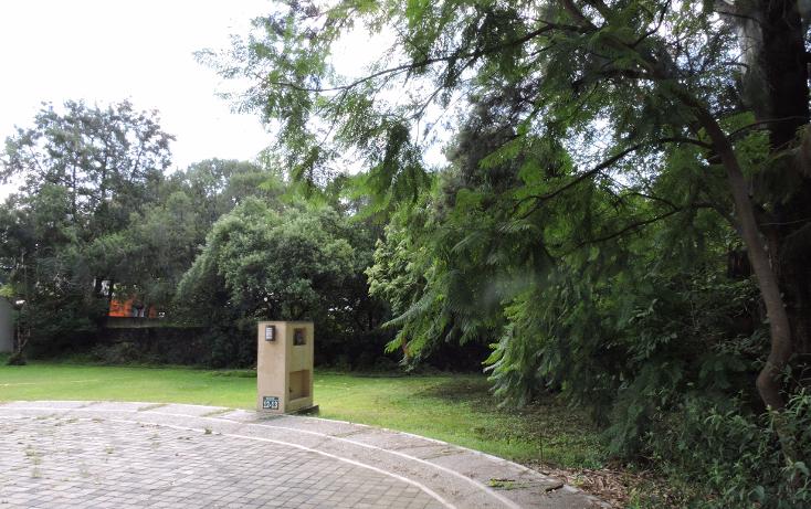 Foto de terreno habitacional en venta en  , ahuatepec, cuernavaca, morelos, 1336421 No. 04
