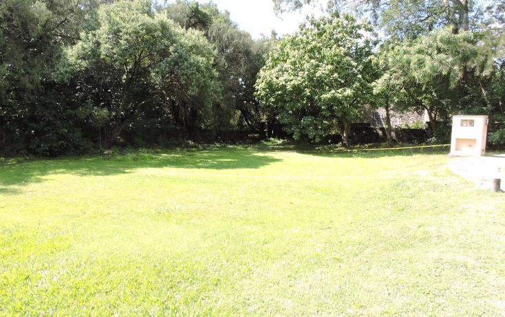 Foto de terreno habitacional en venta en  , ahuatepec, cuernavaca, morelos, 1336421 No. 05