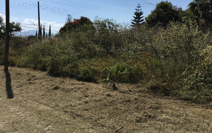 Foto de terreno comercial en venta en  , ajijic centro, chapala, jalisco, 1693694 No. 09