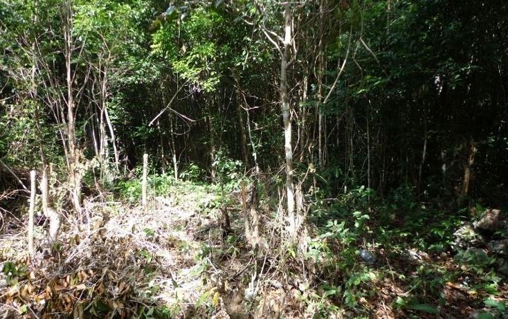 Foto de terreno comercial en venta en  , akumal, tulum, quintana roo, 1851290 No. 01