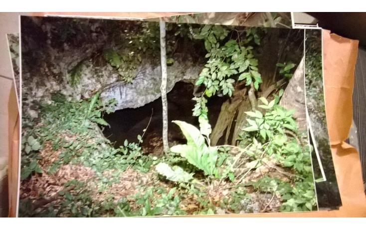 Foto de terreno comercial en venta en  , akumal, tulum, quintana roo, 2000922 No. 07