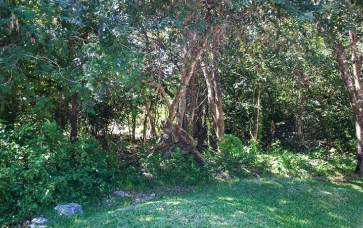 Foto de terreno habitacional en venta en  , akumal, tulum, quintana roo, 790631 No. 06