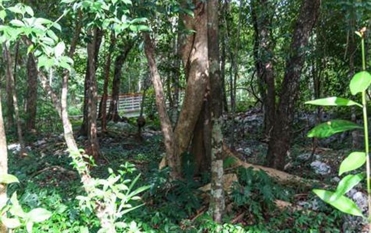 Foto de terreno habitacional en venta en  , akumal, tulum, quintana roo, 823691 No. 02