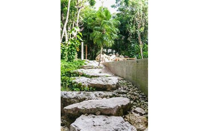 Foto de terreno habitacional en venta en  , akumal, tulum, quintana roo, 823691 No. 05