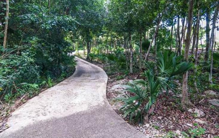 Foto de terreno habitacional en venta en  , akumal, tulum, quintana roo, 823691 No. 06