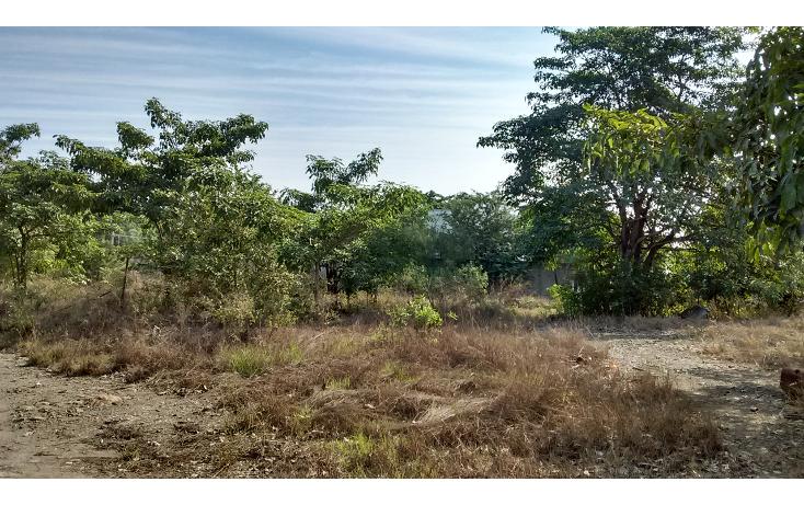 Foto de terreno comercial en venta en  , alameda, altamira, tamaulipas, 1542108 No. 03
