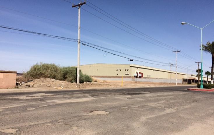 Foto de terreno comercial en venta en  , alamitos, mexicali, baja california, 945293 No. 02