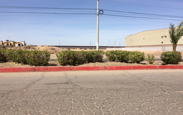 Foto de terreno comercial en venta en  , alamitos, mexicali, baja california, 945293 No. 03