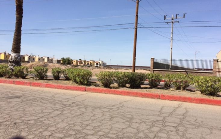 Foto de terreno comercial en venta en  , alamitos, mexicali, baja california, 945293 No. 04