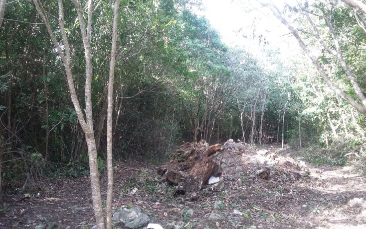 Foto de terreno habitacional en venta en, álamos i, benito juárez, quintana roo, 1636454 no 09