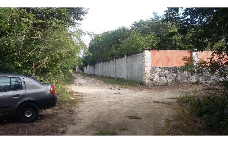 Foto de terreno habitacional en venta en  , ?lamos i, benito ju?rez, quintana roo, 1636454 No. 10