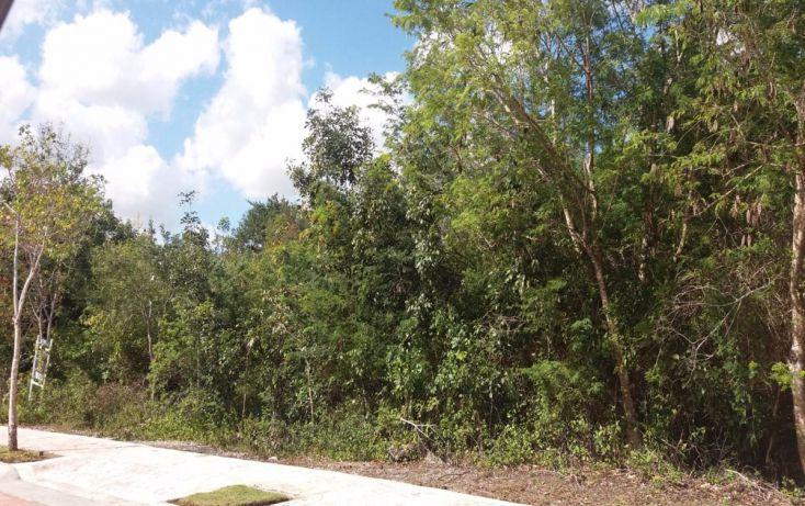 Foto de terreno habitacional en venta en, álamos i, benito juárez, quintana roo, 1769060 no 08