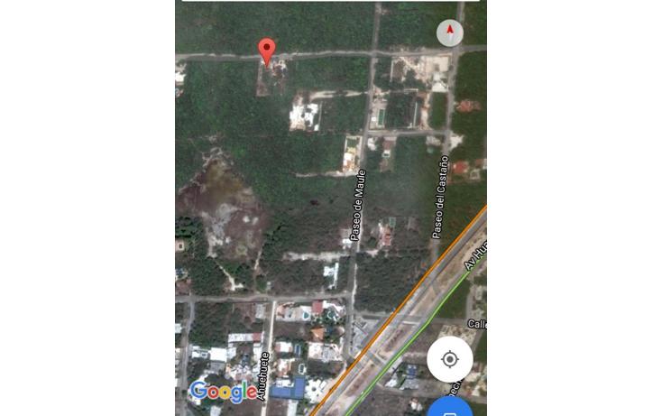 Foto de terreno habitacional en venta en  , ?lamos i, benito ju?rez, quintana roo, 1773242 No. 02