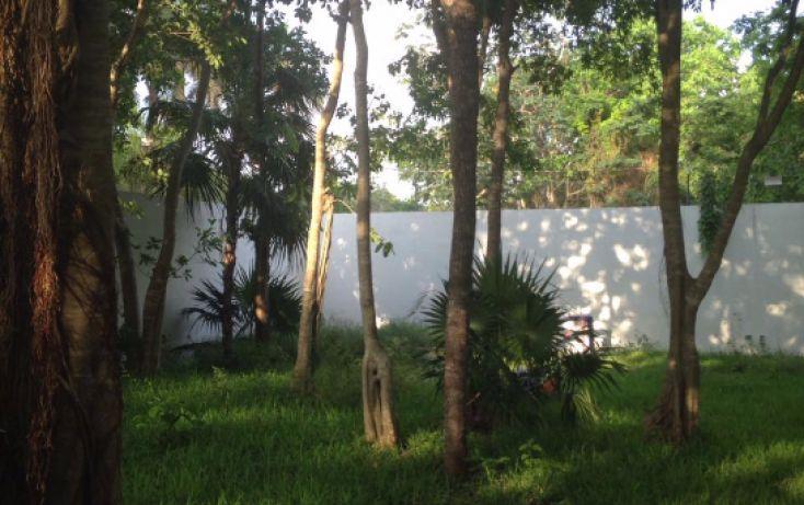 Foto de terreno habitacional en venta en, álamos i, benito juárez, quintana roo, 2016402 no 08