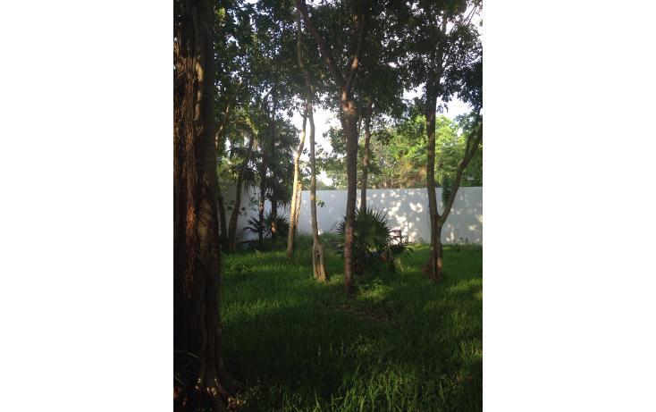 Foto de terreno habitacional en venta en  , álamos i, benito juárez, quintana roo, 2016402 No. 08