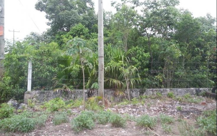 Foto de terreno habitacional en venta en, álamos i, benito juárez, quintana roo, 513712 no 01