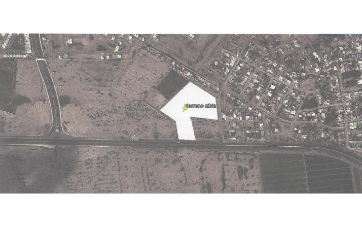 Foto de terreno habitacional en venta en  , albia, torre?n, coahuila de zaragoza, 1288537 No. 01