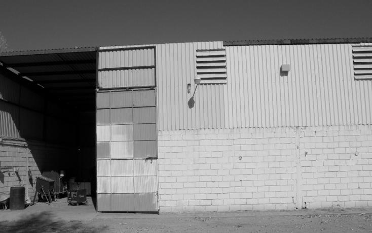 Foto de nave industrial en renta en  , albia, torreón, coahuila de zaragoza, 1601738 No. 04