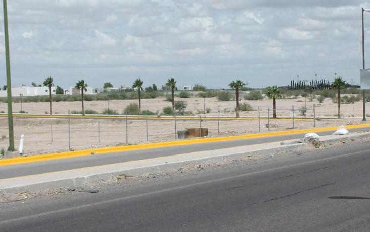 Foto de terreno comercial en venta en  , albia, torre?n, coahuila de zaragoza, 394258 No. 02