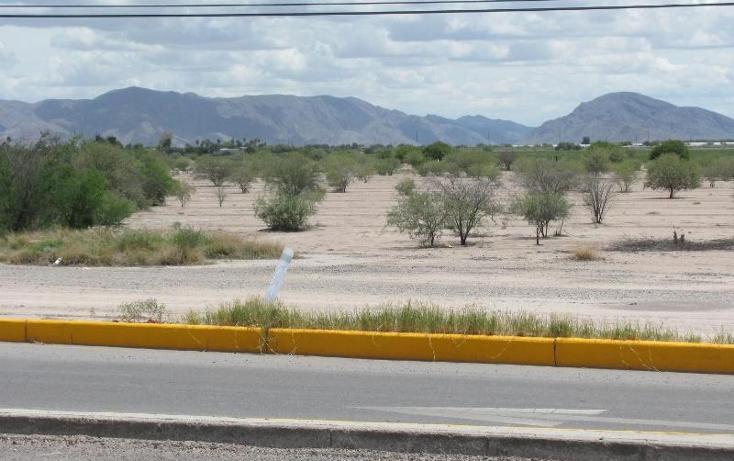 Foto de terreno comercial en venta en  , albia, torre?n, coahuila de zaragoza, 394258 No. 05