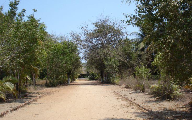 Foto de terreno habitacional en venta en, alborada cardenista, acapulco de juárez, guerrero, 1105911 no 06