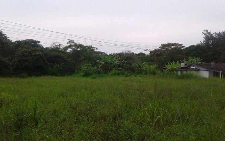 Foto de terreno habitacional en venta en, alborada, emiliano zapata, veracruz, 1238909 no 03