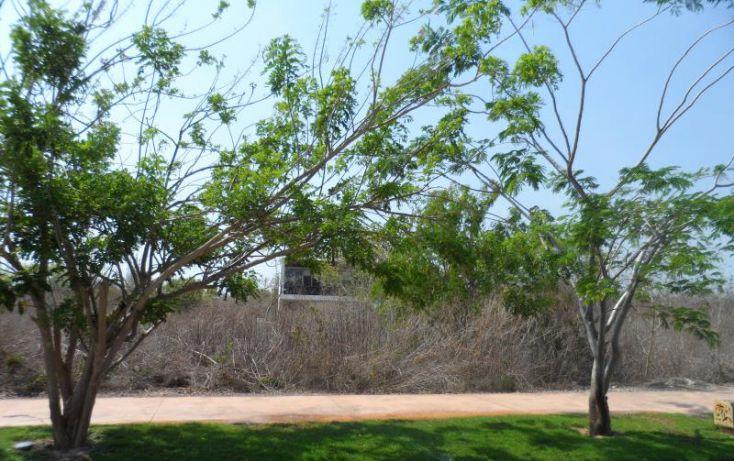 Foto de terreno habitacional en venta en, alcalá martín, mérida, yucatán, 1372217 no 09