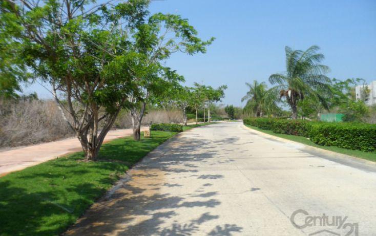 Foto de terreno habitacional en venta en, alcalá martín, mérida, yucatán, 1719400 no 04
