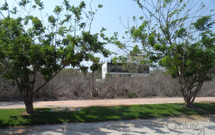 Foto de terreno habitacional en venta en, alcalá martín, mérida, yucatán, 1719400 no 08