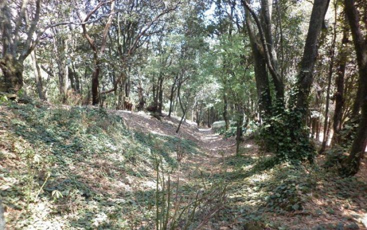 Foto de terreno habitacional en venta en, alcantarilla, álvaro obregón, df, 1232589 no 01
