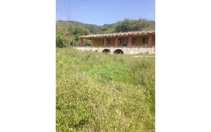 Foto de rancho en venta en  , alchichica, izúcar de matamoros, puebla, 1466383 No. 02