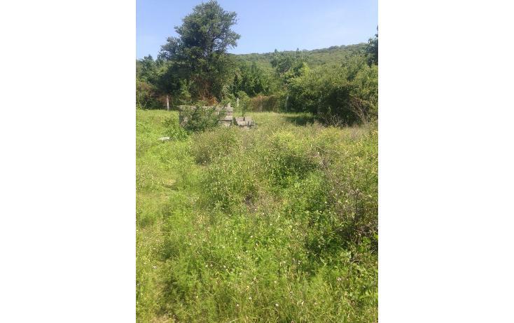 Foto de rancho en venta en  , alchichica, izúcar de matamoros, puebla, 1466383 No. 05